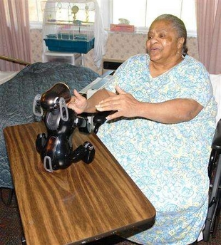 AIBO eases patient isolation